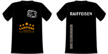 2015 Trainingsshirt